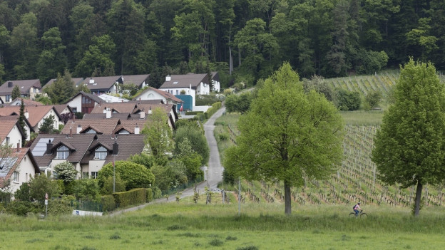 Ein Wald liegt direkt neben einer Siedlung und neben einem Ackerfeld.