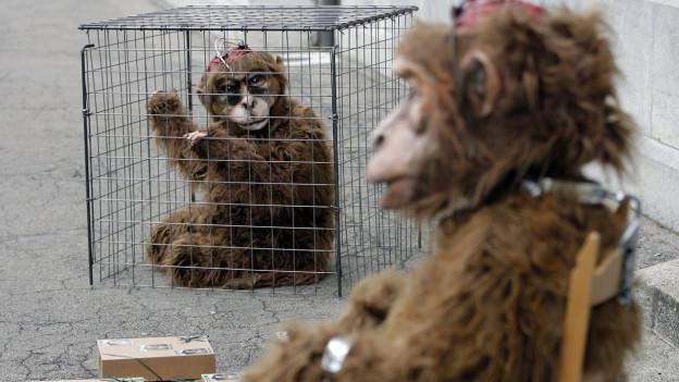 Zwei Personen in Affenkostümen, eine sitzt im Käfig, die andere vor dem Käfig.