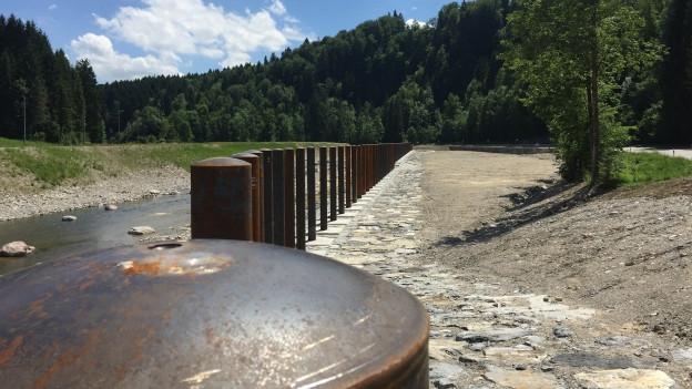 Ein Flussufer, darauf Holzpfähle
