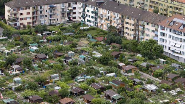 Familiengarten von oben