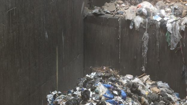 Abfall im Hagenholz