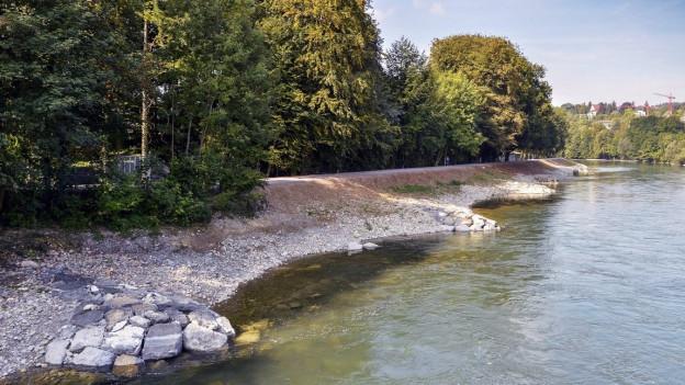 Flussw mit natürlichen Ufern