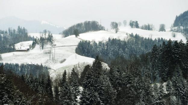 Verschneite Hügellandschaft