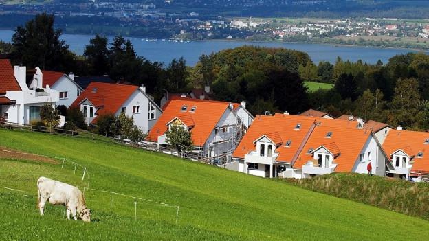Immer noch beliebt: Einfamilienhäuser