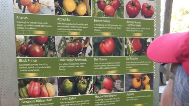 Für diese exotischen Tomatensorten standen die Leute Schlange.