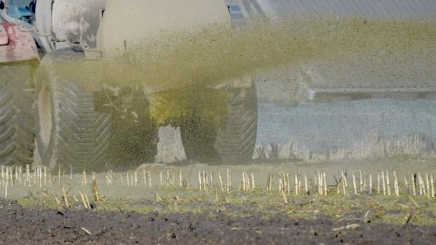 Ein Bauer versprüht Gülle auf einem Feld.
