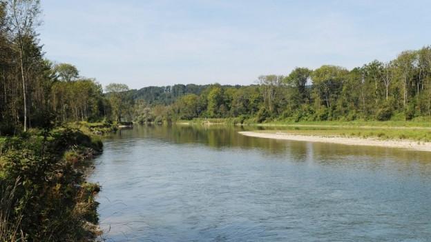 Die Thur mündet bei Flaach im Kanton Zürich in den Rhein.