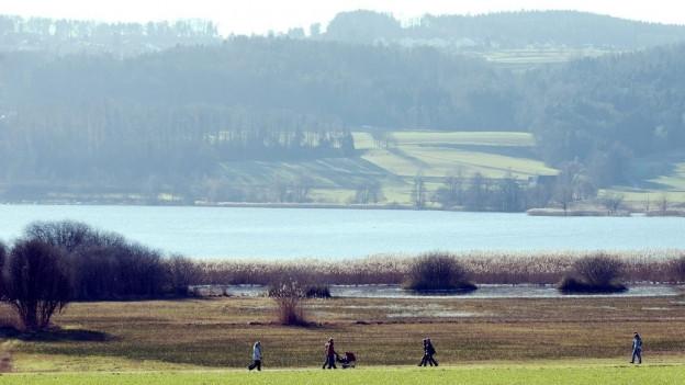 Der Greifensee bei schönem Wetter, im Vordergrund wandern eine Spaziergänger.