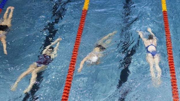 Schwimmerinnen und Schwimmer in einem Hallenbad