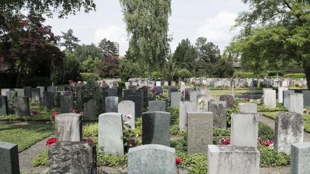 Grabfeld auf einem Friedhof