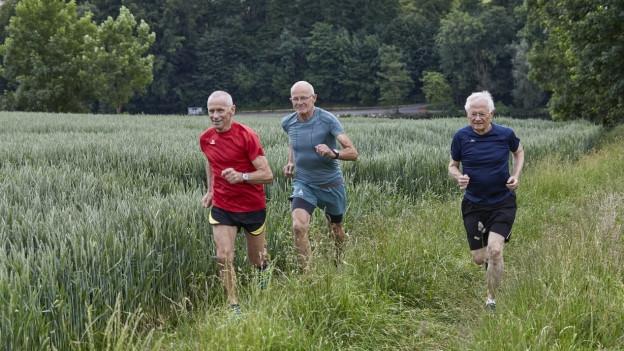 Drei ältere Männer joggen durch eine Wiese.