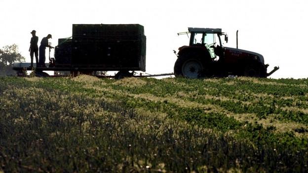 Ein Traktor auf dem Feld.