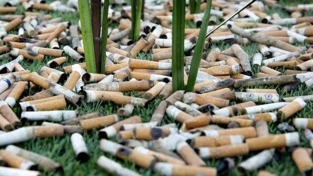 Zigarettenstummel auf einer Wiese