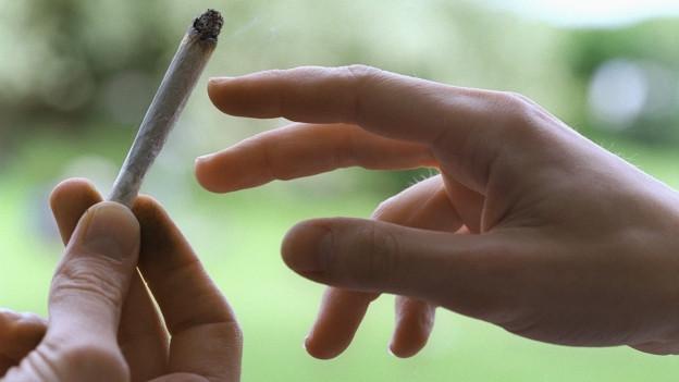 Cannabis soll auch in Winterthur legal gekauft werden können.