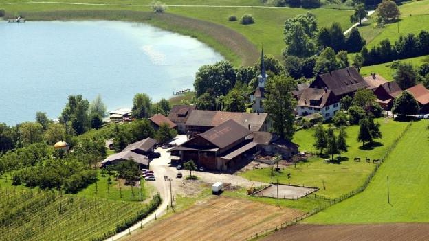 Sonniges Herbstwetter lockt Touristen und Touristinnen an den Pfäffikersee.
