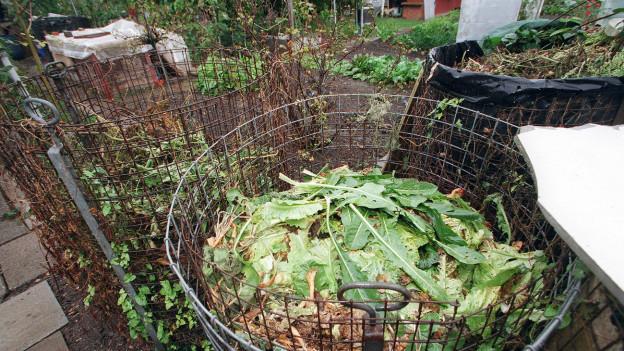 Kompost in einem Garten