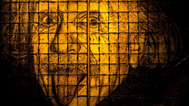 Albert Einstein e sia expressiun famusa.