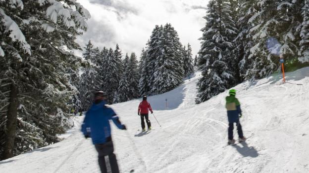 Trais skiunz èn sin ina pista che va atras in guaud.