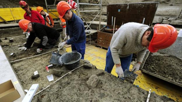 archeologs