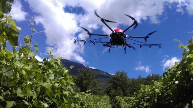 Drona en acziun