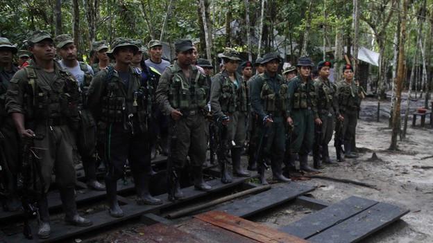 FARC - Fuerzas Armadas Revolucionarias de Colombia
