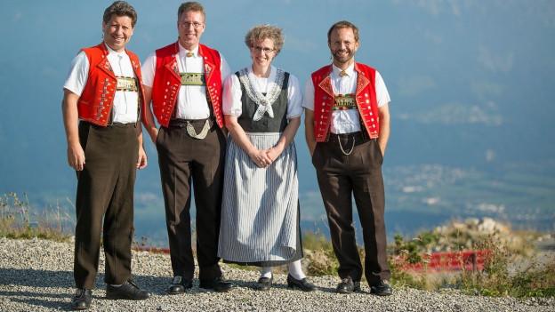 ina gruppa da musicists dal Appenzell