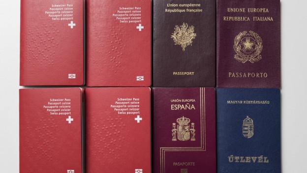 Pass svizzers dasper pass dal exteriur.
