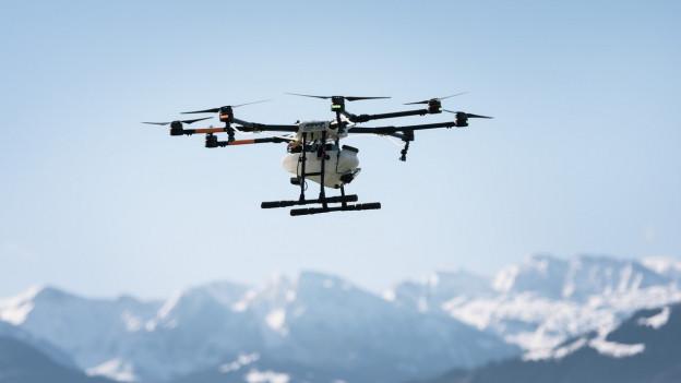Savens èn dronas equipadas cun cameras.