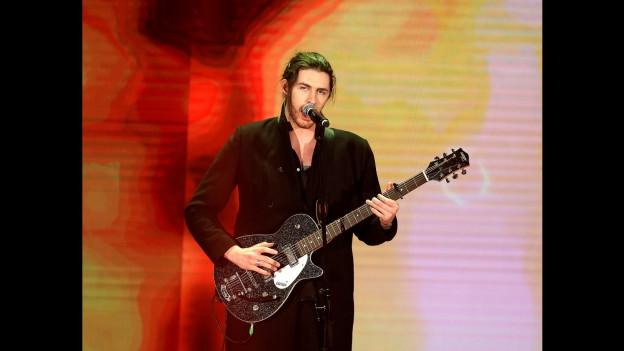 Hozier durant in concert