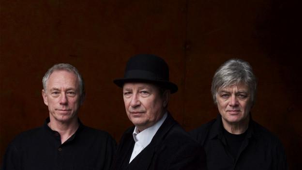 la band Ollandaisa