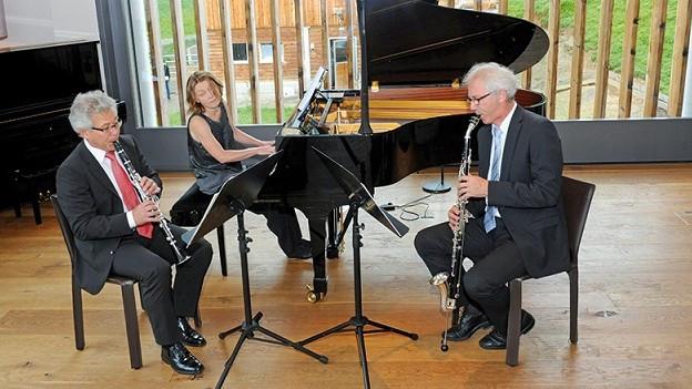 Calamus Trio - in concert