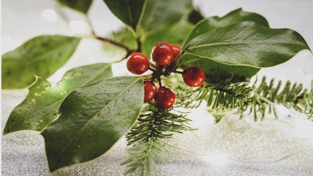 Chanzuns d'enviern, d'Advent e Nadal da diversas terras