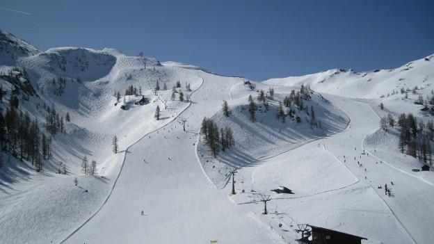 Skiunzas e skiunz en acziun
