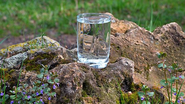 Für sauberes Trinkwasser zu sorgen, ist in der Entwicklungshilfe ein grosses Anliegen.