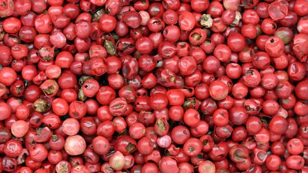 Früchte des Pfefferbaums