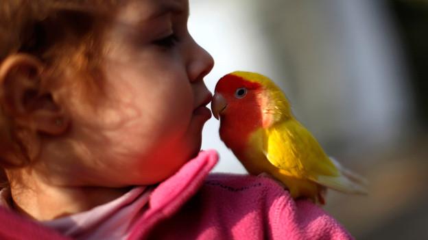 «Was willst du mir sagen?» - Die Sprache der Tiere ist für uns Menschen oft ein grosses Geheimnis.