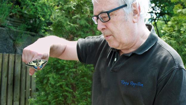 Marc de Roche mit einem frischgeschlüpften Schwalbenschwanz.