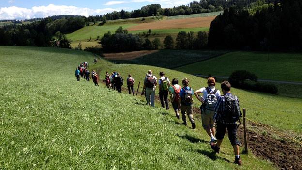 Eine Wandergruppe bei «Querfeldeins» letzten Sommer.