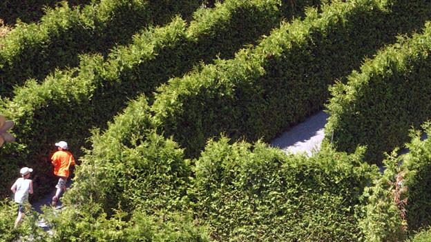 Es gibt in der ganzen Schweiz Labyrinthe. Eines steht auch in Evionnaz (VS).