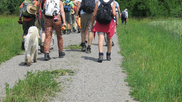 Wandern über Feld und Wiese.