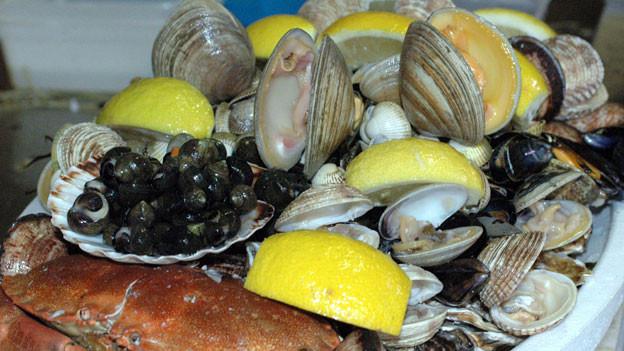 Muscheln kann man das ganze Jahr über essen.
