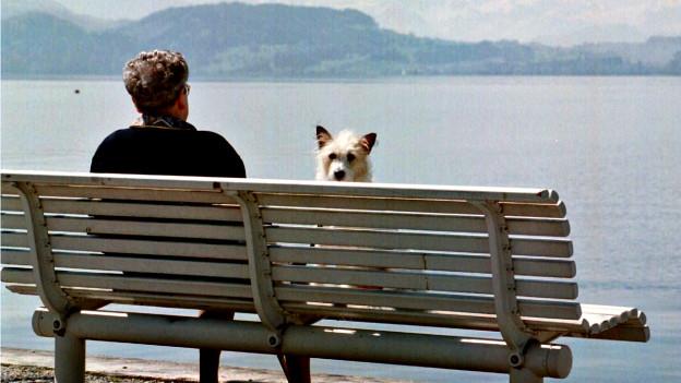 Eintracht am Zugersee: Eine ältere Frau geniesst mit ihrem Hund das schöne Wetter.