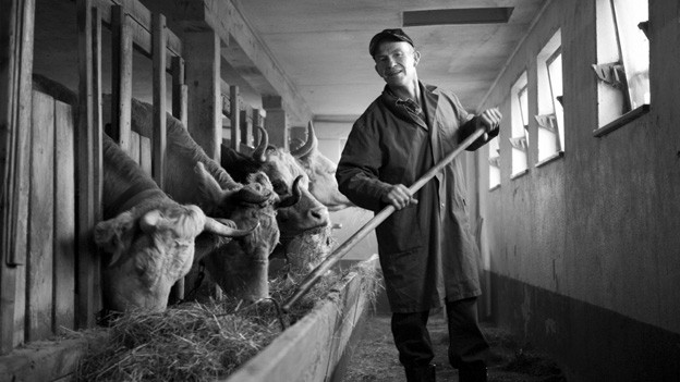 Ein Hauch von Nostalgie? Dem Bauernstand in der Schweiz fehlen Nachfolger. (Symbolbild)