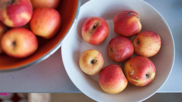 Bald gibt es besonders gute Äpfel aus der Schweiz.