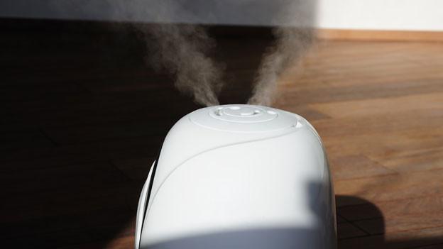 Wem ein Luftbefeuchter in der Wohnung nicht gefällt, kann auf Alternativen zurückgreifen.