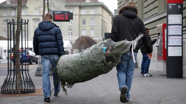 Weihnachtsbaum schon geholt? Der «Treffpunkt» fragt bei den Hörern nach dem Stand der Vorbereitungen für das Weihnachtsfest.