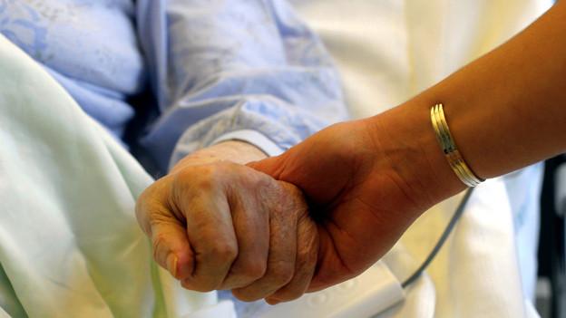 Gefährdet oder entlastet die Freiwilligenarbeit die professionelle Altershilfe?