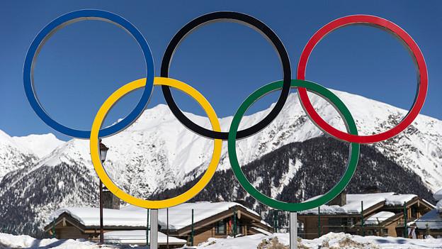 Die Olympischen Ringe im «Cluster Olympic Village» in Krasnaya Plyana.