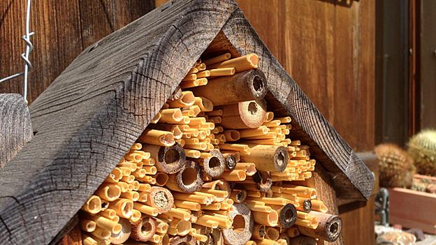 Zu einer Pyramide aufgeschichtete Schilfröhrchen unter einem Dach aus Holz.