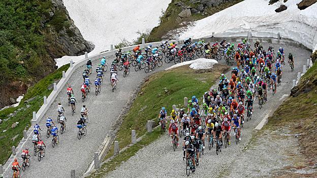 Radrennfahrer auf einer Passstrasse an der Tour de Suisse.